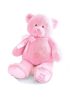 Gund My First Teddy™ Pink 10""